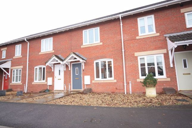 2 bed terraced house to rent in Burge Crescent, Cotford St. Luke, Taunton TA4