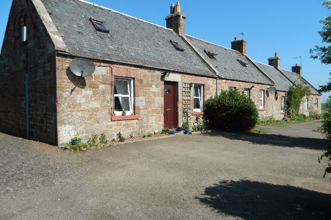 Thumbnail Flat to rent in Carfrae Cottages, Garvald, East Lothian