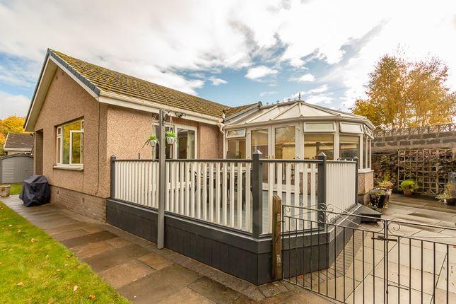 Thumbnail Detached bungalow for sale in Rosemount Park Gardens, Blairgowrie