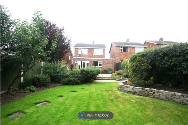 Thumbnail Detached house to rent in Croftway, Markfield