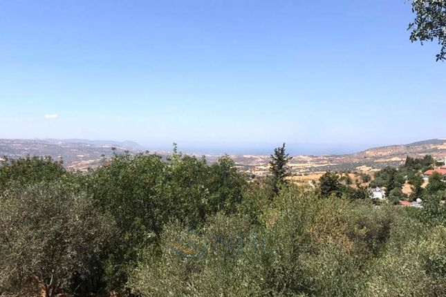 Thumbnail Land for sale in Simou, Paphos, Cyprus