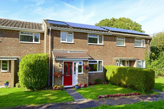 Thumbnail Terraced house for sale in Hillside Road, Wool BH20.