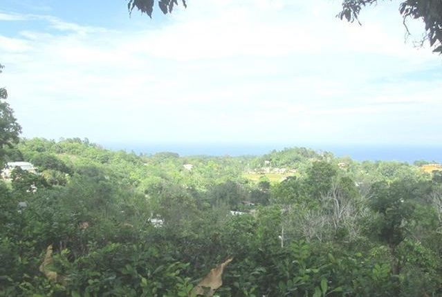 Land for sale in St Anns Bay, Saint Ann, Jamaica