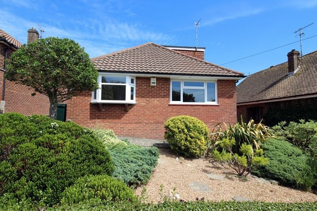 Thumbnail Detached bungalow to rent in Selhurst Road, Brighton