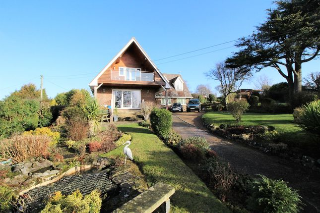 Thumbnail Detached house for sale in Peelings Lane, Westham