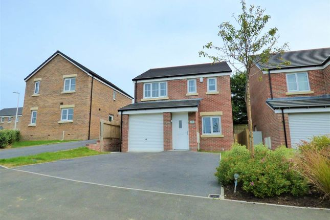 3 bed detached house to rent in Maes Pedr, Carmarthen, Carmarthenshire SA31