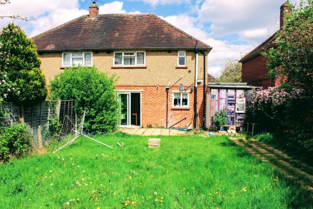 Thumbnail Semi-detached house to rent in 3 St. Johns Road, Guildford