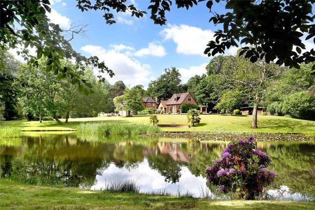 Thumbnail Detached house for sale in Highams Lane, Chobham, Surrey