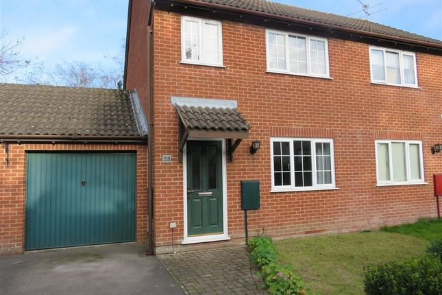 Thumbnail Property to rent in Fair Lane, Shaftesbury