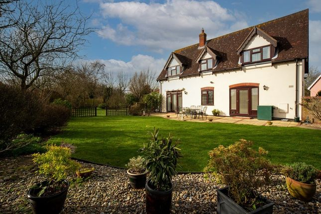Thumbnail Detached house for sale in Talbots Meadow, Stuston, Diss