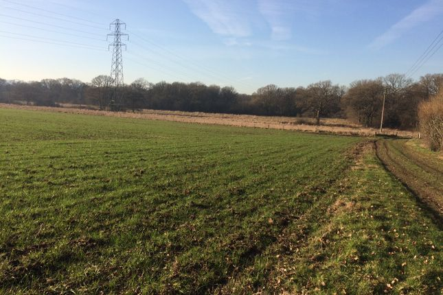 Thumbnail Land for sale in Green Street, East Worldham, Alton