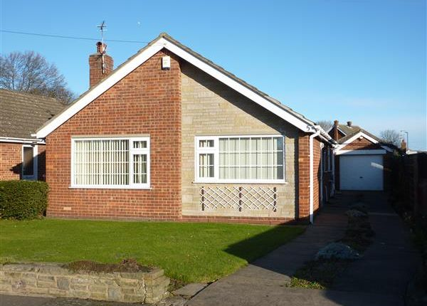 Thumbnail Detached bungalow for sale in Chestnut Road, Waltham, Grimsby