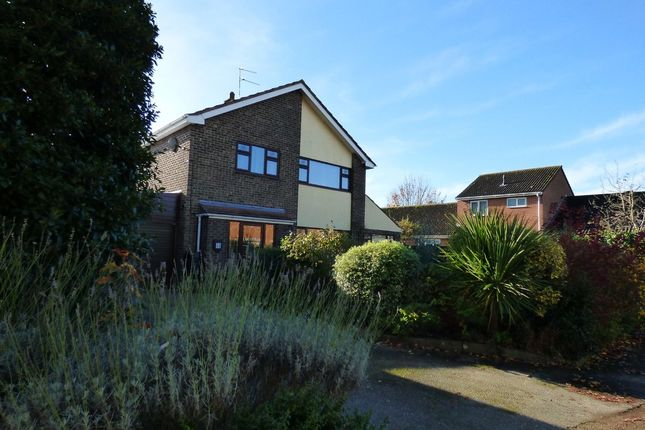Thumbnail Detached house to rent in Goose Green East, Beccles