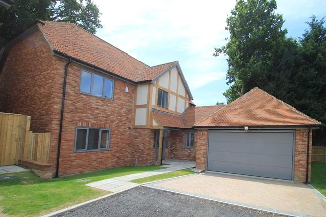 Thumbnail Detached house for sale in Cedar Close, Northiam, East Sussex