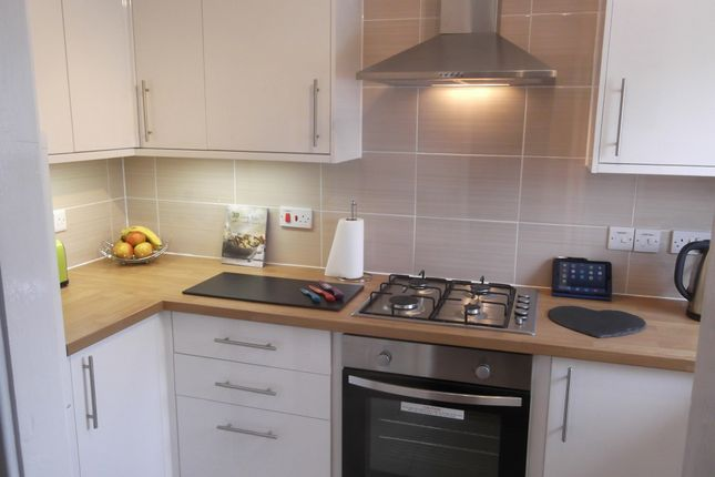 Thumbnail Semi-detached house to rent in Mallard Close, Chatteris