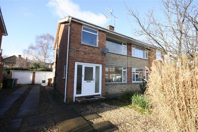 Thumbnail Semi-detached house to rent in Lawnsgarth, Cottingham