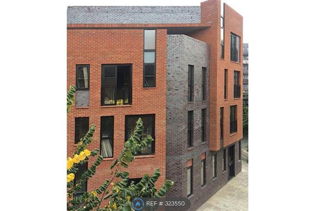 Thumbnail Terraced house to rent in Steedman Street, London