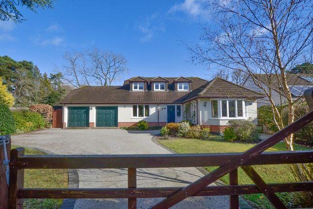 Thumbnail Bungalow for sale in Beechwood Road, West Moors, Ferndown, Dorset