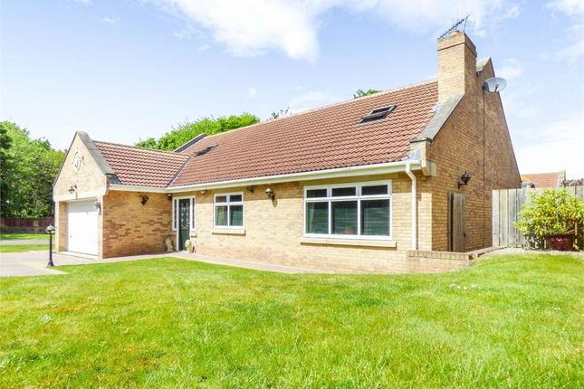 Thumbnail Detached bungalow for sale in Plantation Road, Redcar, North Yorkshire