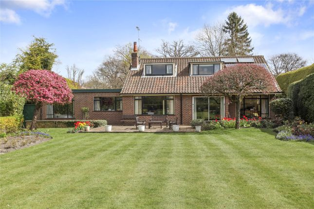 Thumbnail Detached house for sale in Malacca Farm, West Clandon, Guildford, Surrey