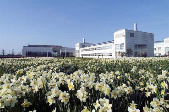 Office to let in Nafic Science Campus, York, N Yorks