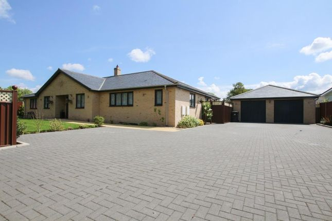 Thumbnail Detached bungalow for sale in Cathedral View Park, Witchford, Ely