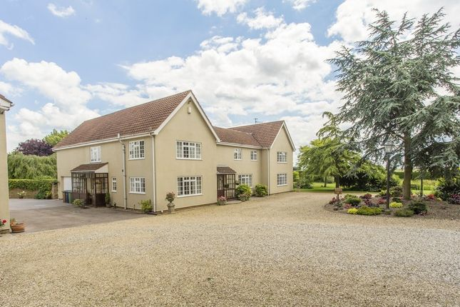 Thumbnail Detached house for sale in Bull Bridge, Upwell, Wisbech