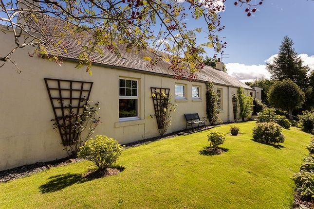 Thumbnail Cottage for sale in Careston, Nr Brechin, Brechin, Angus