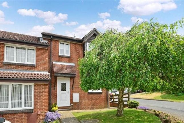 Thumbnail Semi-detached house to rent in Forge Rise, Uckfield