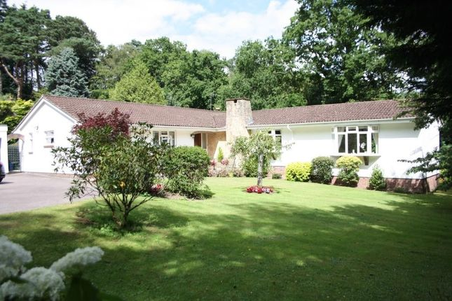 Thumbnail Detached bungalow for sale in Higher Broad Oak Road, West Hill, Ottery St. Mary
