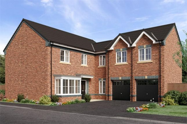 "Thumbnail Detached house for sale in ""Shakespeare"" at Sophia Drive, Great Sankey, Warrington"