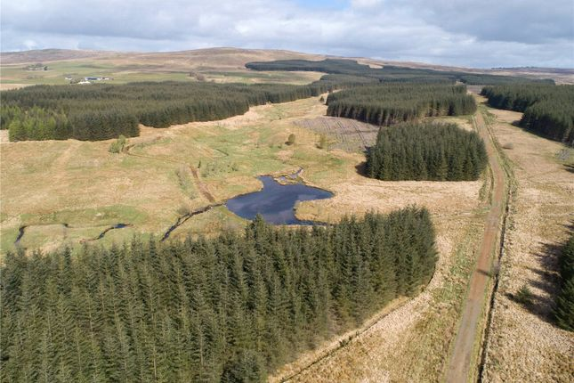 Thumbnail Land for sale in Lot 2: Auchenlongford Forestry, Sorn, Mauchline, East Ayrshire
