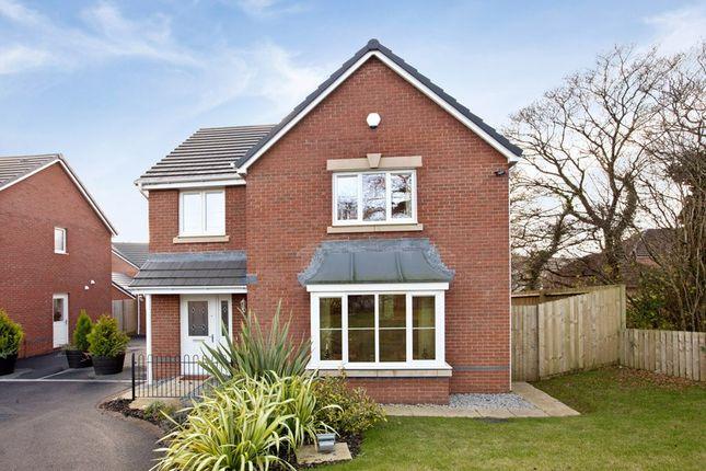 Thumbnail Detached house for sale in Waterloo Gardens, Monbank, Newport