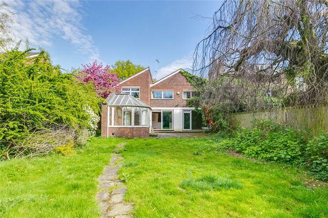 Thumbnail Detached house for sale in Castelnau, London