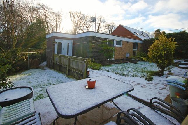 Thumbnail Bungalow for sale in Leazes Park, Hexham