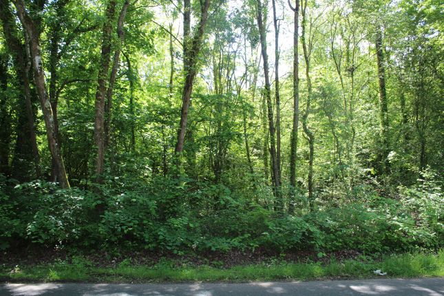 Thumbnail Land for sale in Cothey Bottom Copse, Bullen Road, Ryde