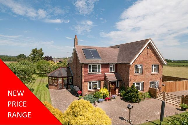Thumbnail Detached house for sale in Court Lane, Hadlow, Tonbridge