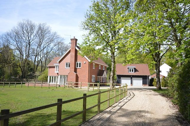 Thumbnail Detached house for sale in Honey Lane, Burley, Ringwood