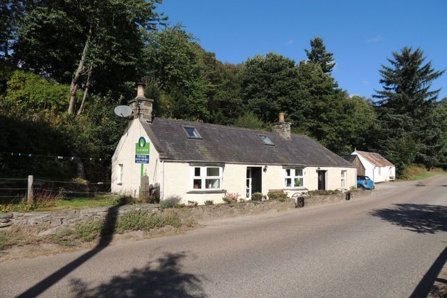 Thumbnail Bungalow for sale in Glenlivet, Ballindalloch