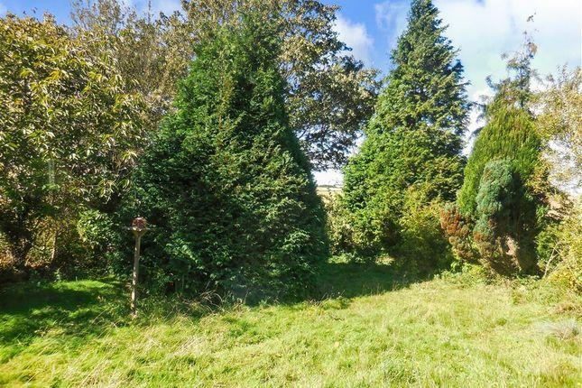 Thumbnail Detached bungalow for sale in Church Lane, Ripple, Deal, Kent