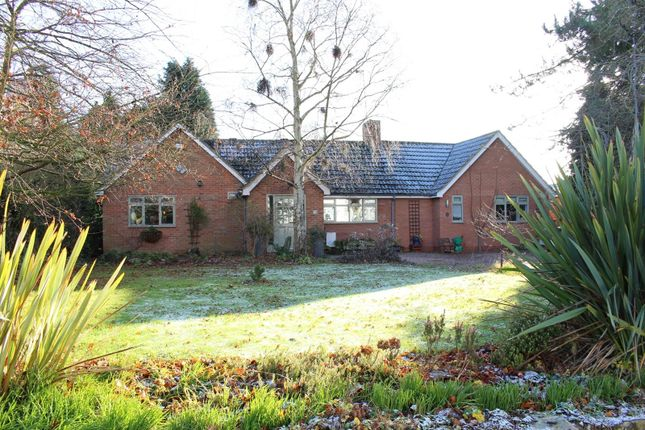 Thumbnail Detached bungalow for sale in Orton-On-The-Hill, Warwickshire