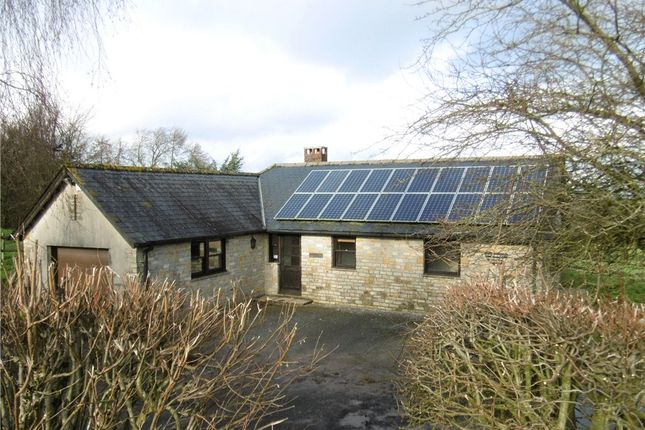 Thumbnail Detached bungalow to rent in Beaminster