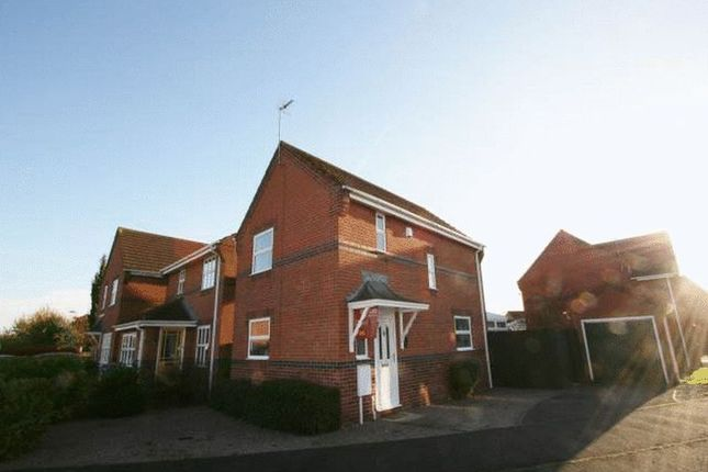 Thumbnail Detached house to rent in Lady Margarets Avenue, Deeping St. James, Peterborough