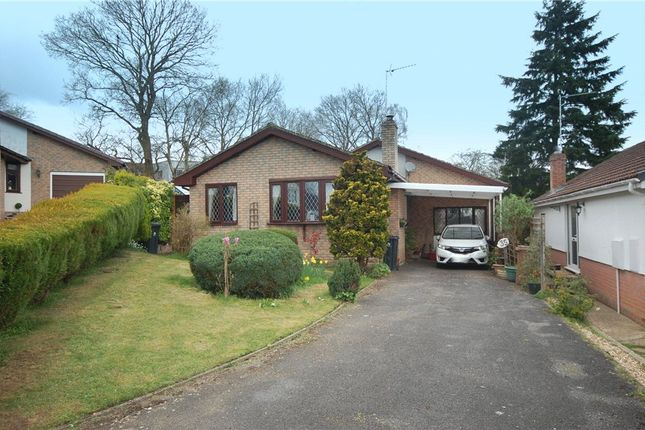 Thumbnail Detached bungalow for sale in Raymond Close, Verwood