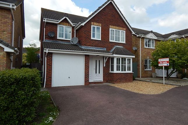Thumbnail Detached house to rent in Exmoor Close, Huntingdon