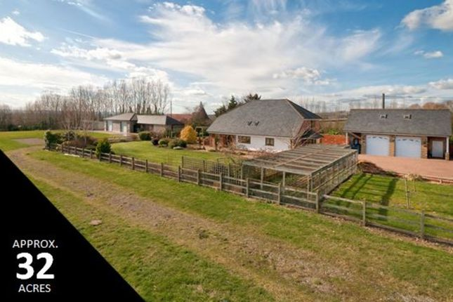 Thumbnail Detached house for sale in Yalding Hill, Yalding, Maidstone