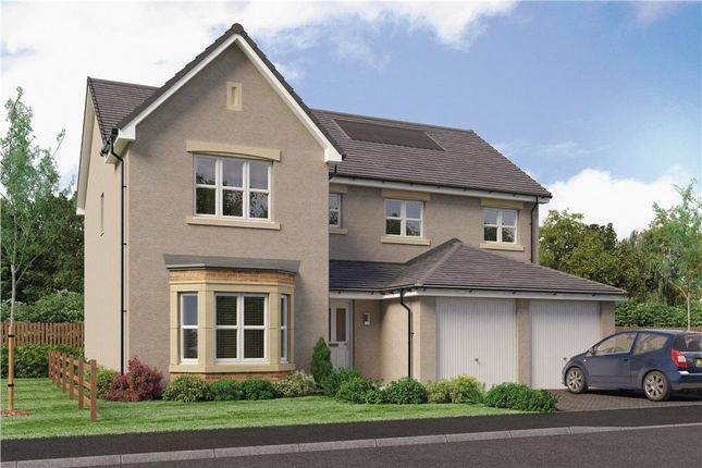 "Thumbnail Detached house for sale in ""Colville"" at Red Deer Road, Cambuslang, Glasgow"