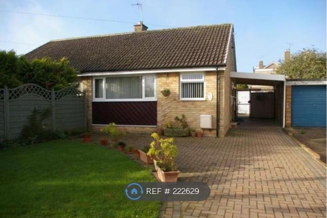 Thumbnail Bungalow to rent in Normandy Avenue, Beverley