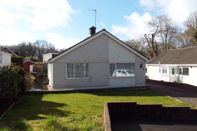 Swansea Room To Rent