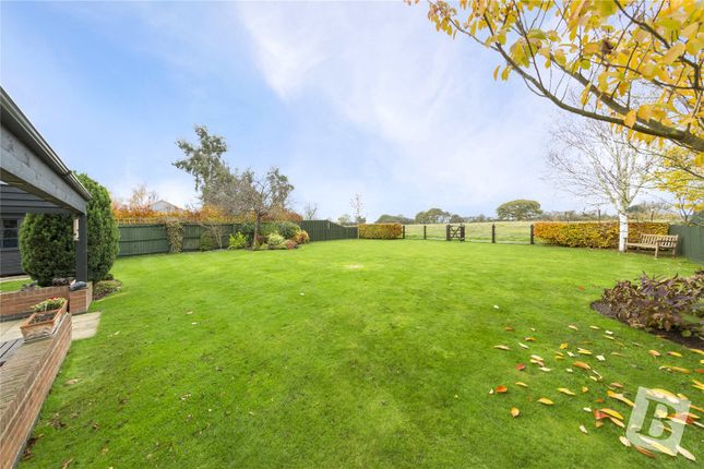Thumbnail Detached house for sale in Maldon Road, Sandon, Chelmsford, Essex